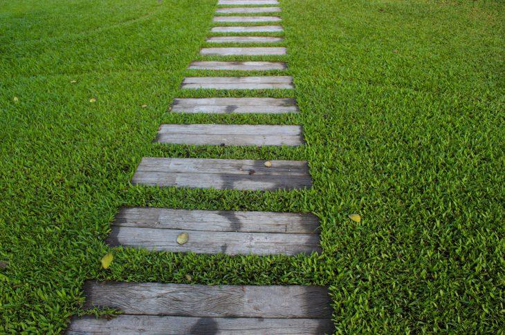 giardino-sempre-verde